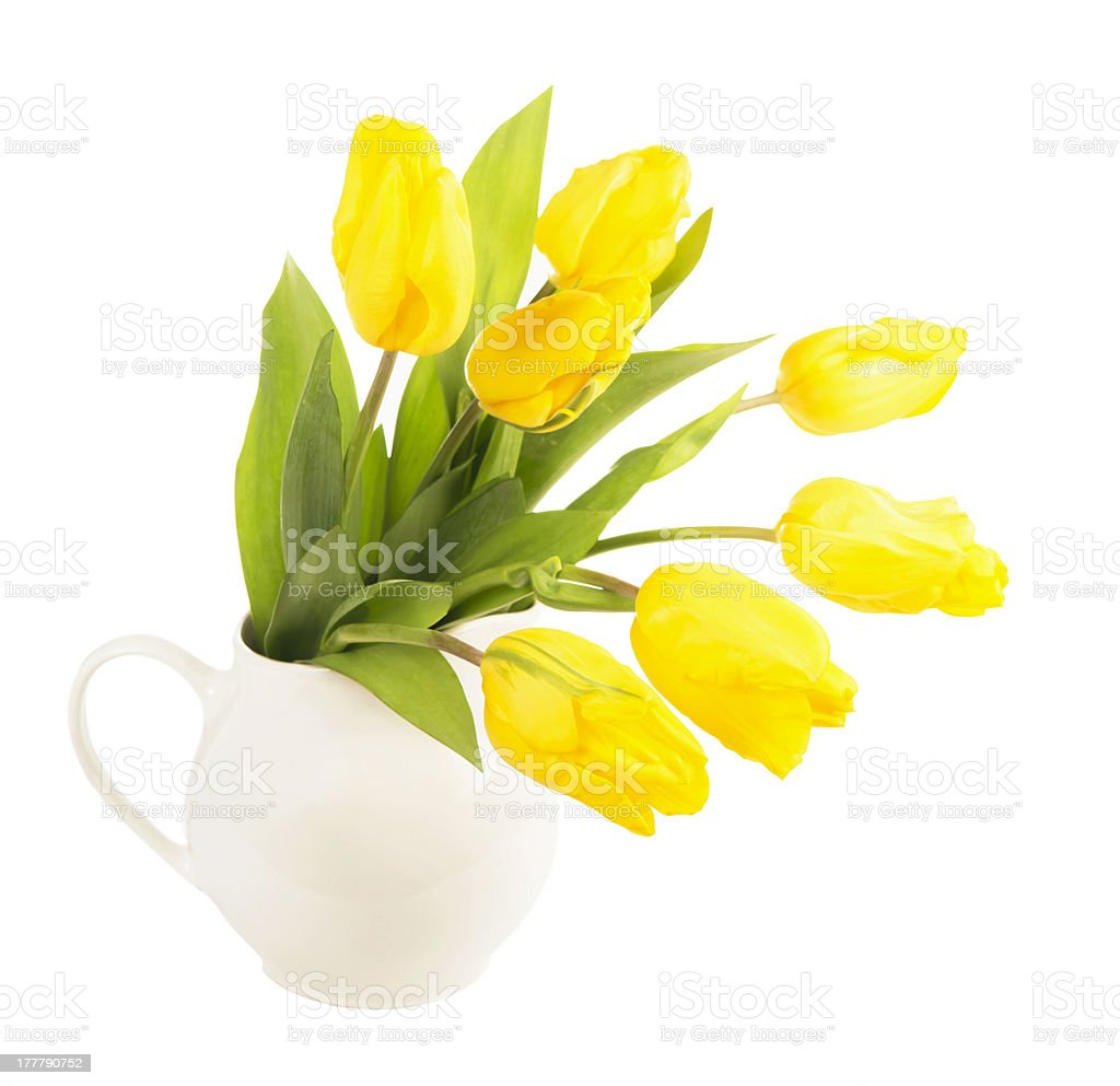 Yellow tulips in a jug royalty-free stock photo