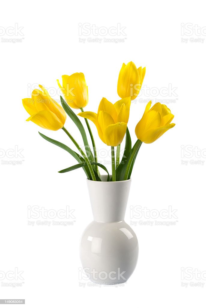 Yellow tulips in a vase stock photo