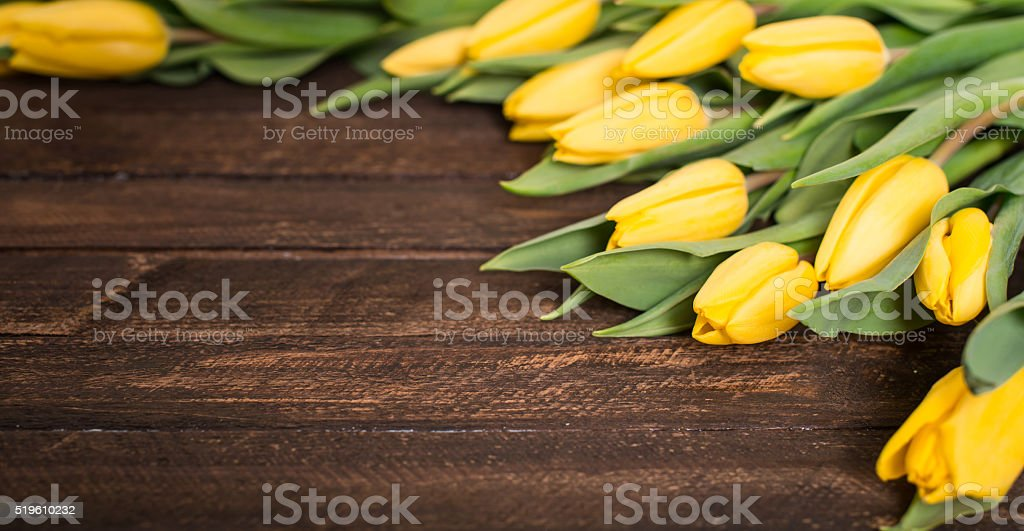 Yellow tulips on rustic wooden background. Selective focus, copyspace. stock photo