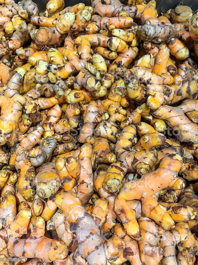 Yellow Turmeric stock photo
