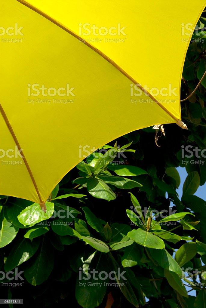 Yellow Umbrella on Green stock photo
