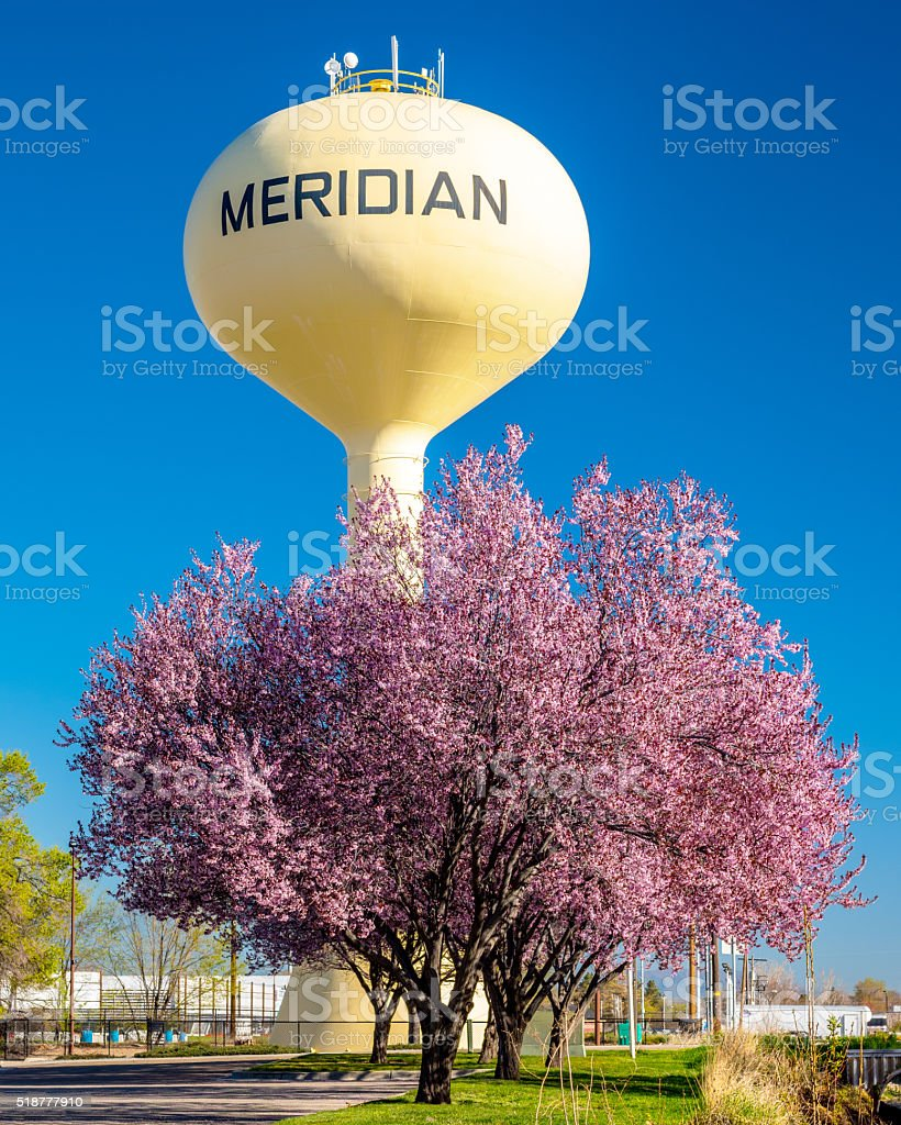 Yellow water tower and pink trees stock photo