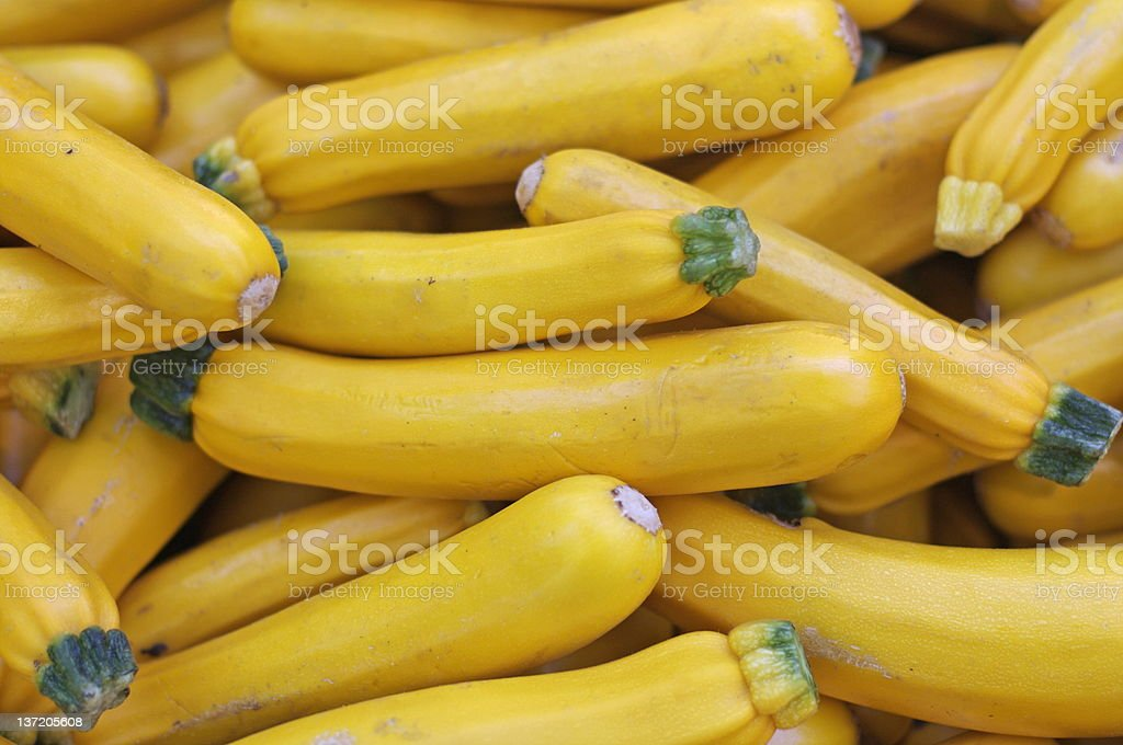 Yellow zucchini royalty-free stock photo