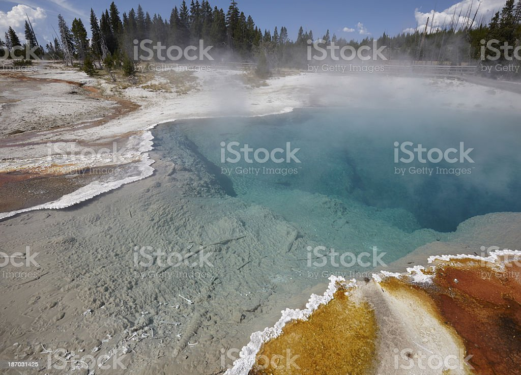 Yellowstone : Black Pool with bones of dead animal royalty-free stock photo