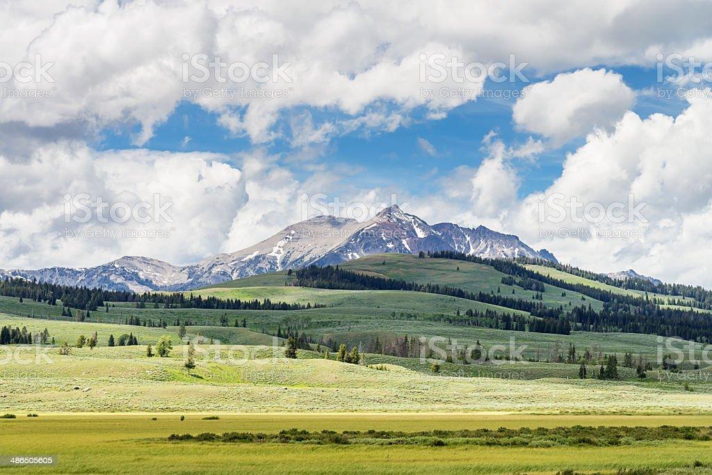Yellowstone National Park Landscape stock photo