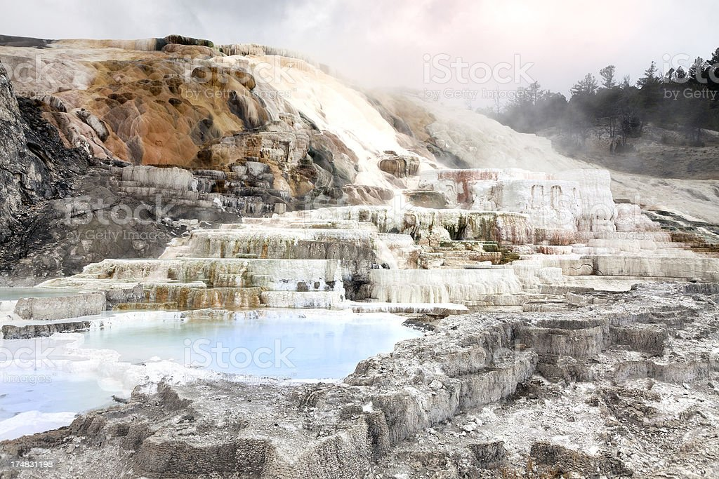 Yellowstone National Park royalty-free stock photo