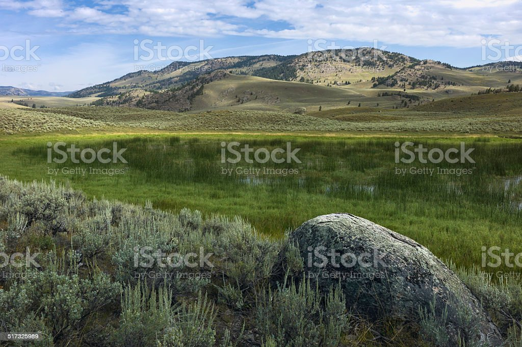 Yellowstone National Park, West Yellowstone, Wyoming, USA. stock photo