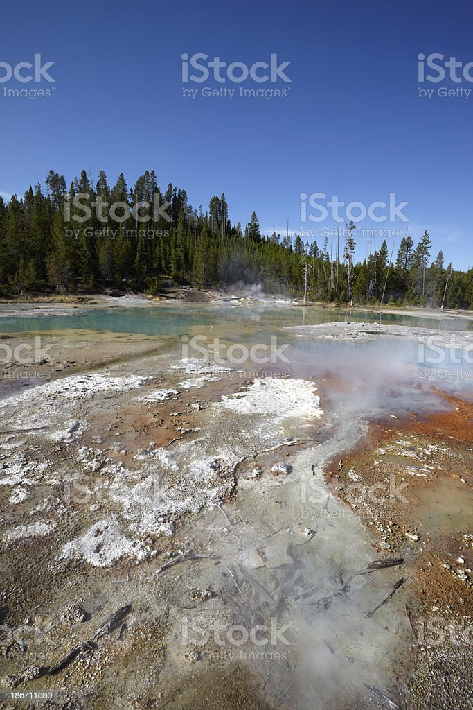 Yellowstone : Norris Geyser Basin royalty-free stock photo