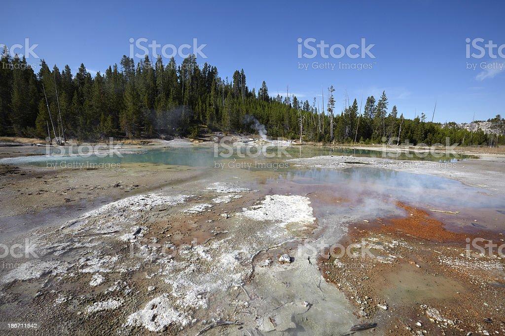 Yellowstone : Norris Geyser Basin royalty-free stock photo
