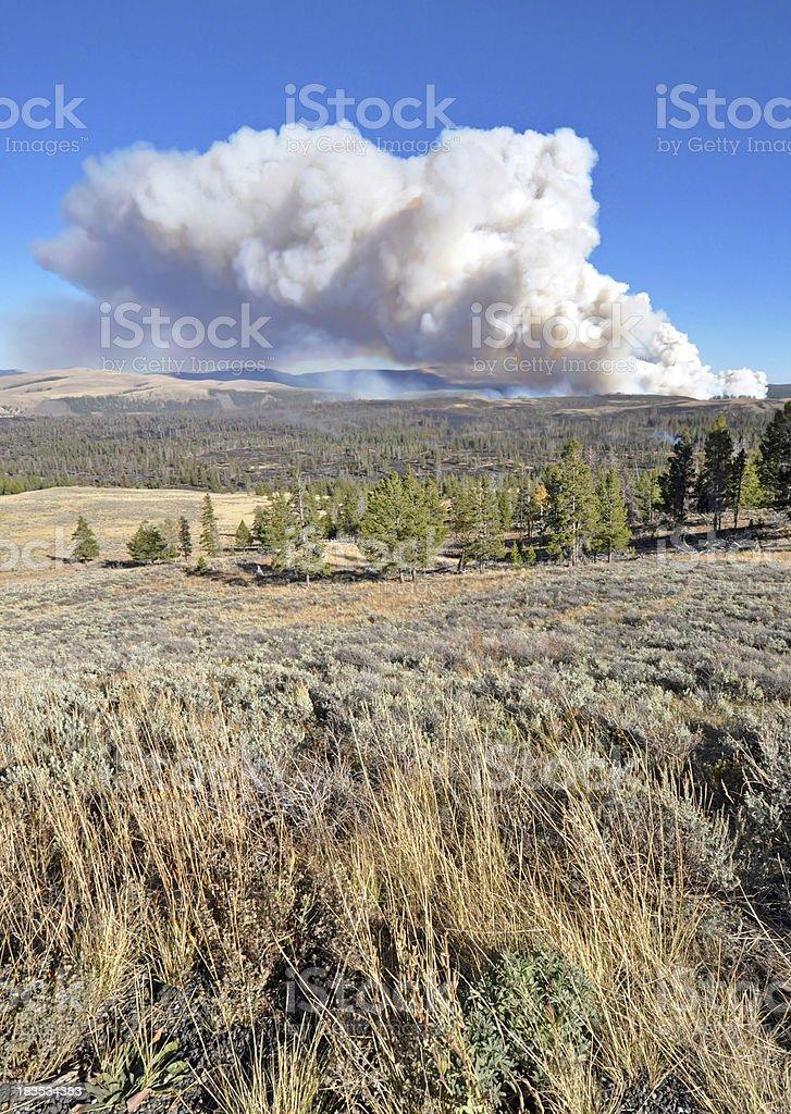 Yellowstone NP Wildfire stock photo