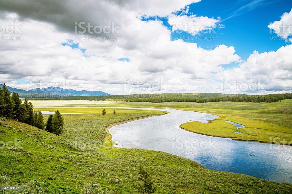 Yellowstone River National Park Landscape stock photo