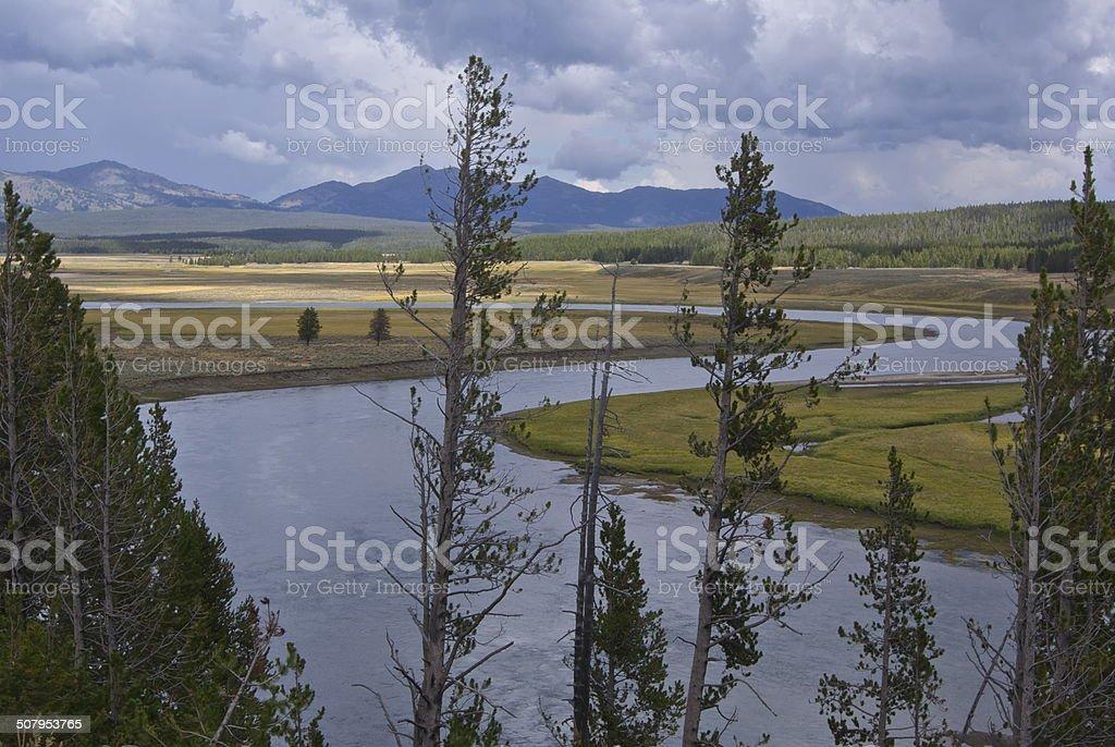 Yellowstone River Snake stock photo