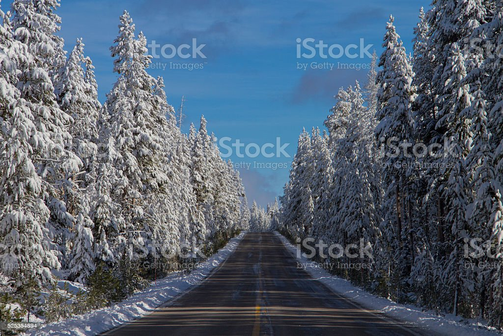 Yellowstone Road in Winter stock photo
