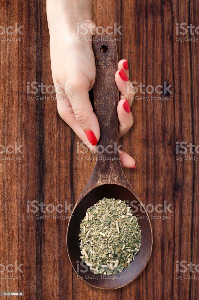 Yerba mate stock photo