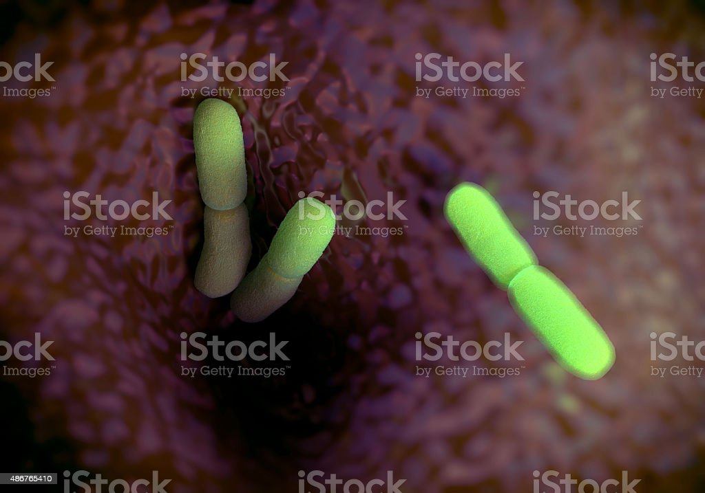 Yersinia pestis bacteria, artwork stock photo