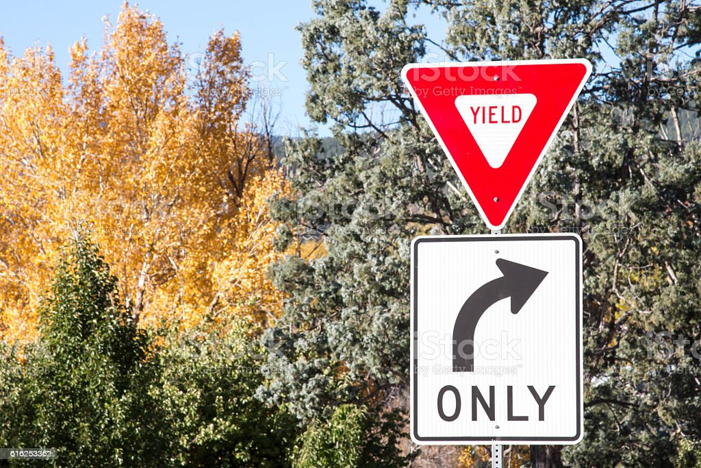 Yield and right turn only signs with autumn trees stock photo