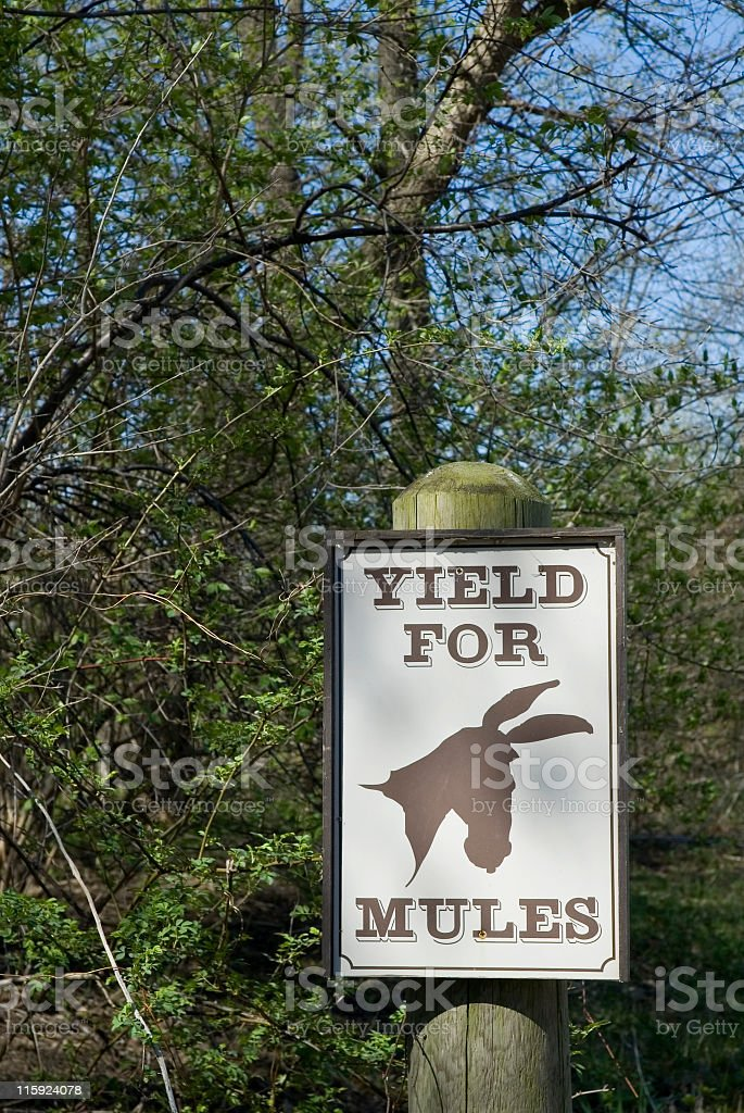 Yield for Mules royalty-free stock photo