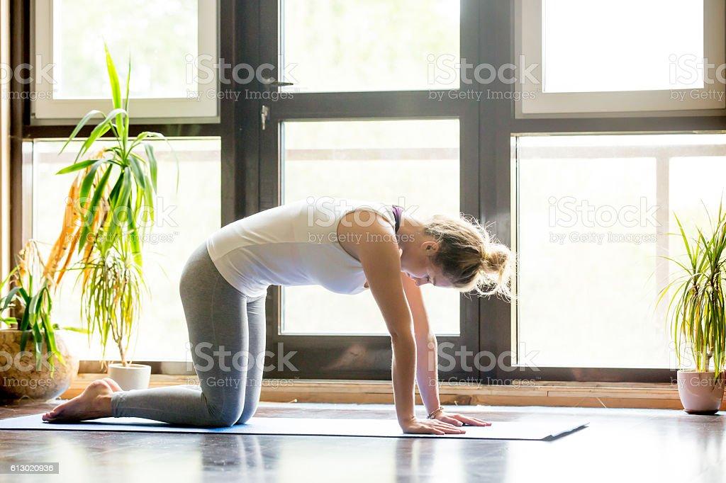 Yoga at home: Cat Pose stock photo