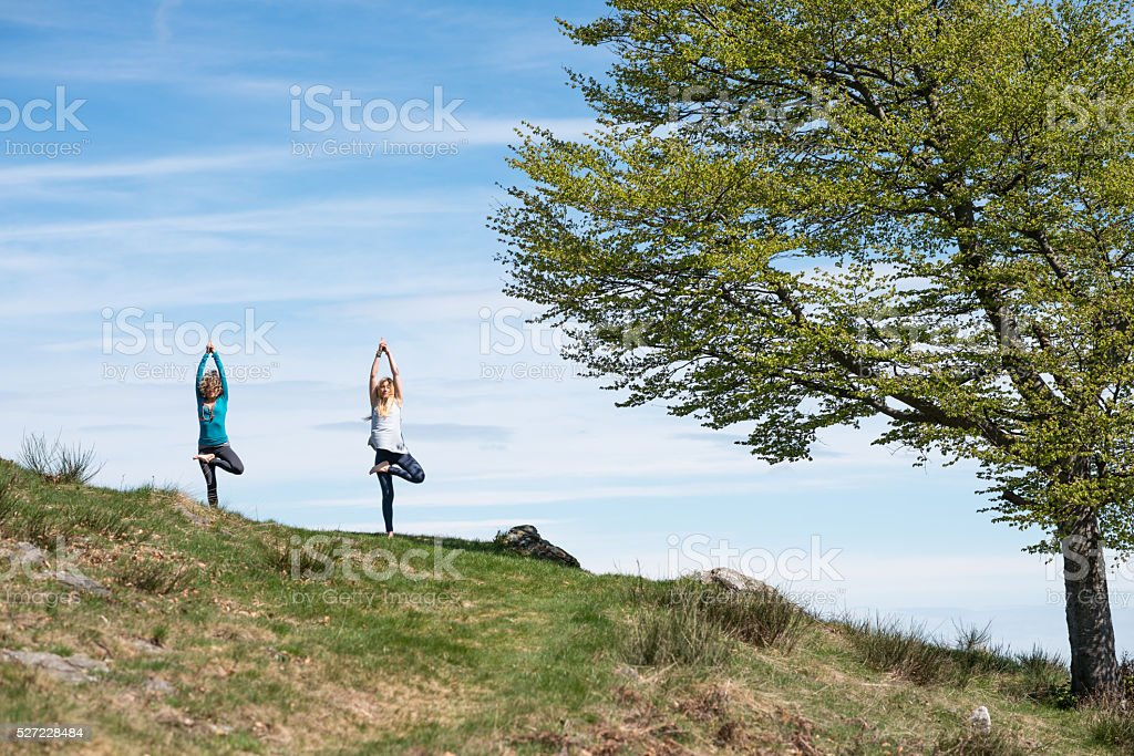 Yoga exercises in nature on mountains: tree pose stock photo