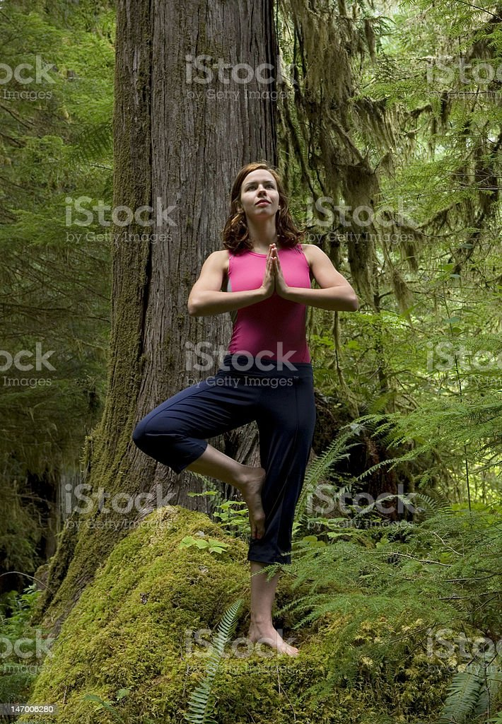 Yoga In Woods royalty-free stock photo