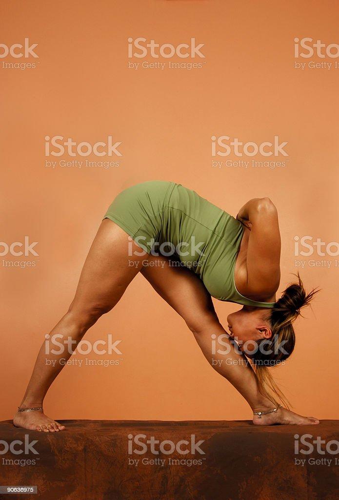 Yoga Pose Head to Shin royalty-free stock photo