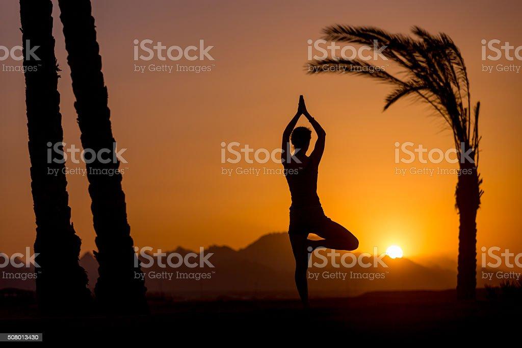 Yoga Vrikshasana pose in tropical location stock photo