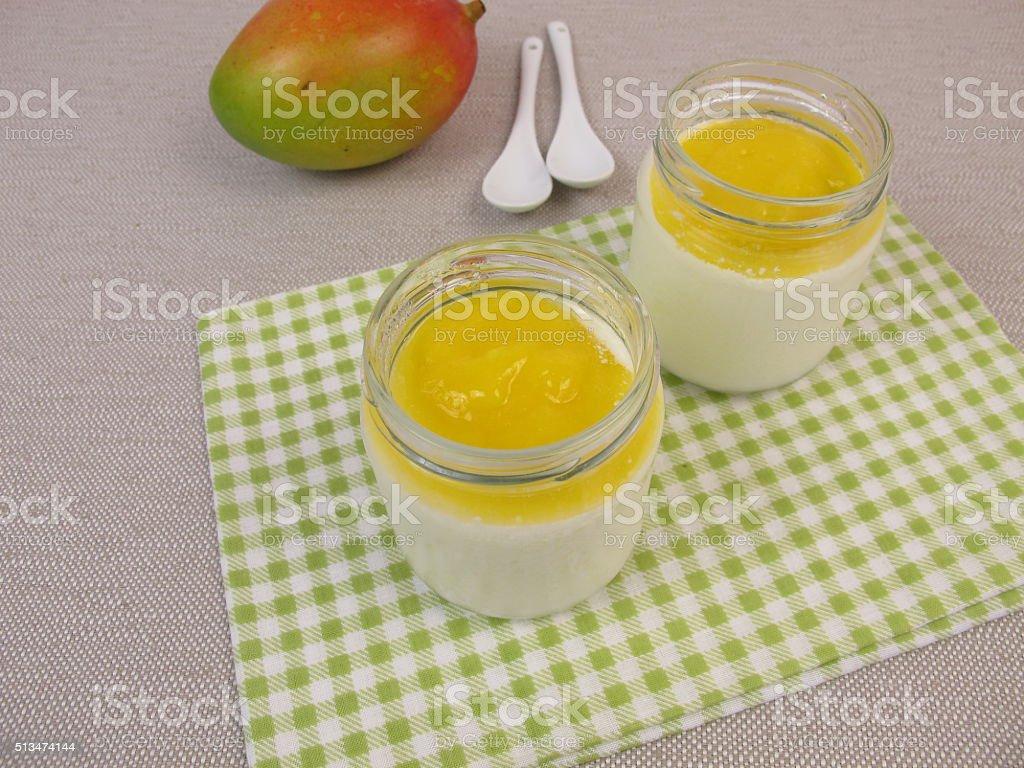 Yogurt from yogurt maker with mango stock photo