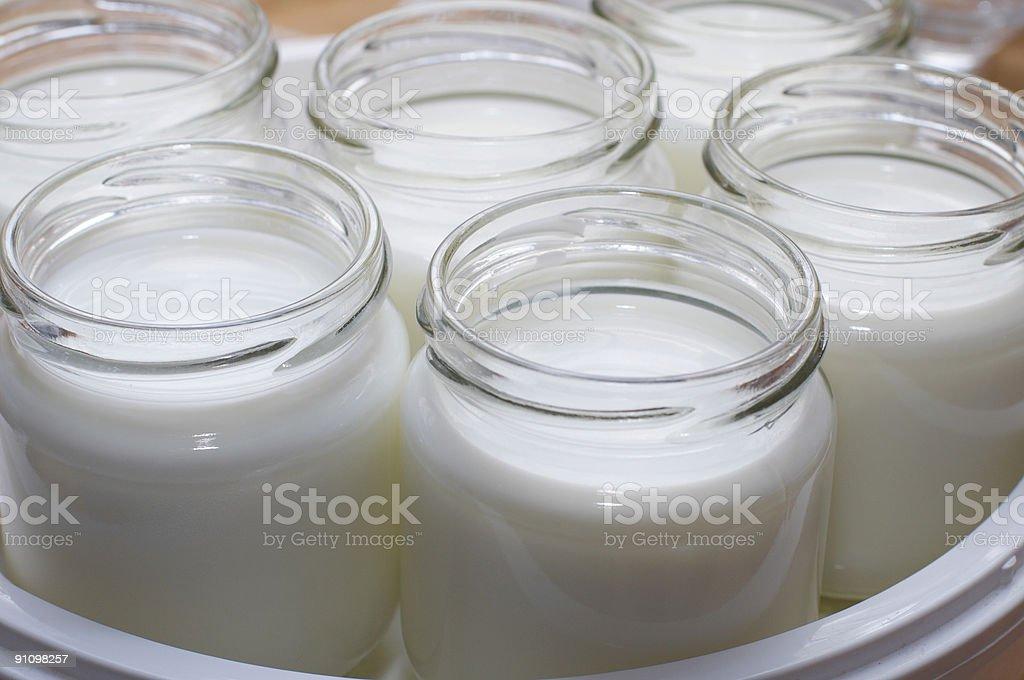 yogurt-maker royalty-free stock photo