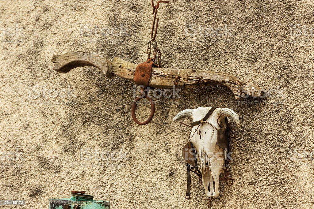 Yoke and Ox Skull stock photo