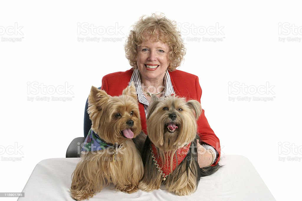 Yorkie Twins & Owner royalty-free stock photo