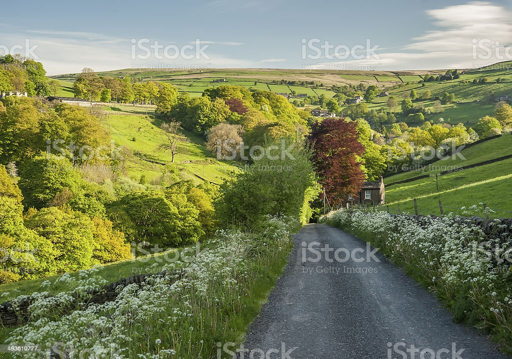 Yorkshire Dales countryside royalty-free stock photo