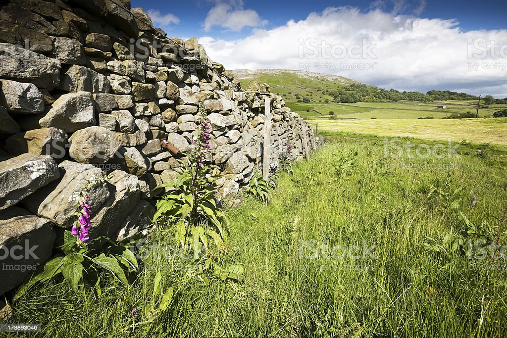 Yorkshire Dales Dry Stone Wall stock photo