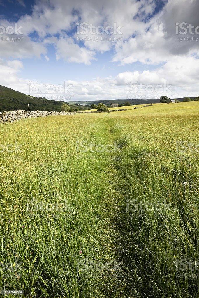 Yorkshire Dales Footpath stock photo