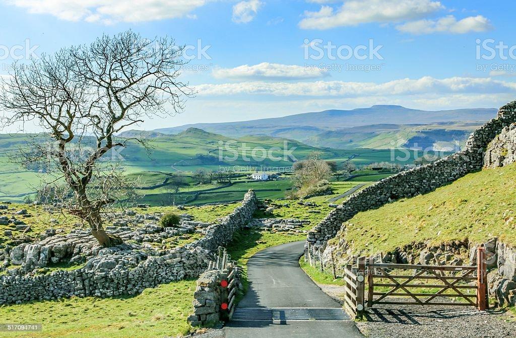 Yorkshire dales landscape stunning scenery england uk green rolling hills stock photo
