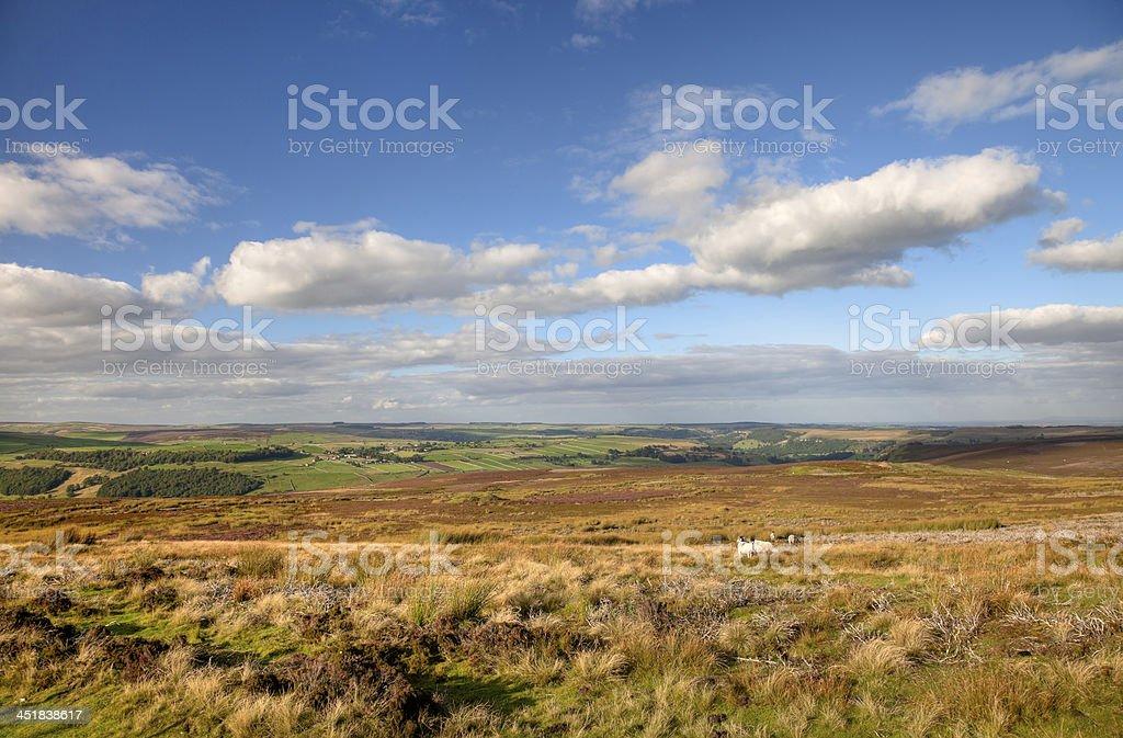 Yorkshire moorland stock photo