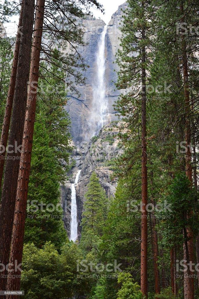 Yosemite Falls in California, USA. stock photo