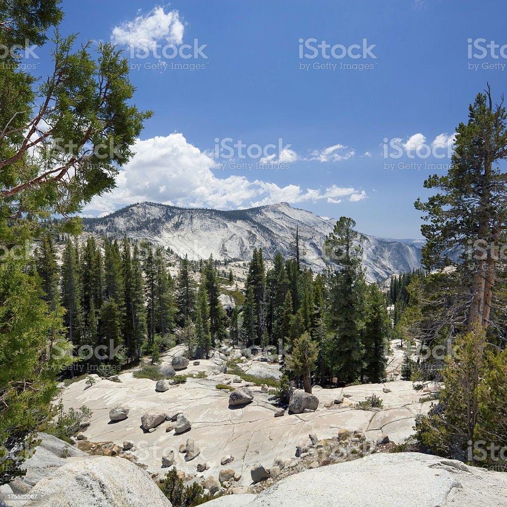 Yosemite landscape stock photo