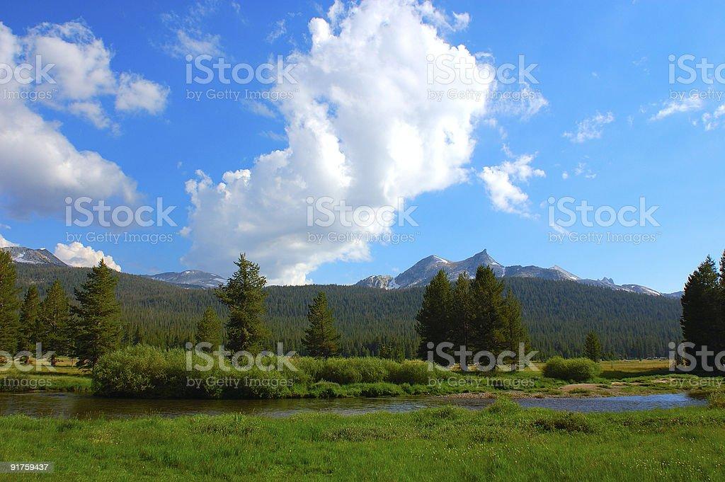Yosemite Meadow royalty-free stock photo