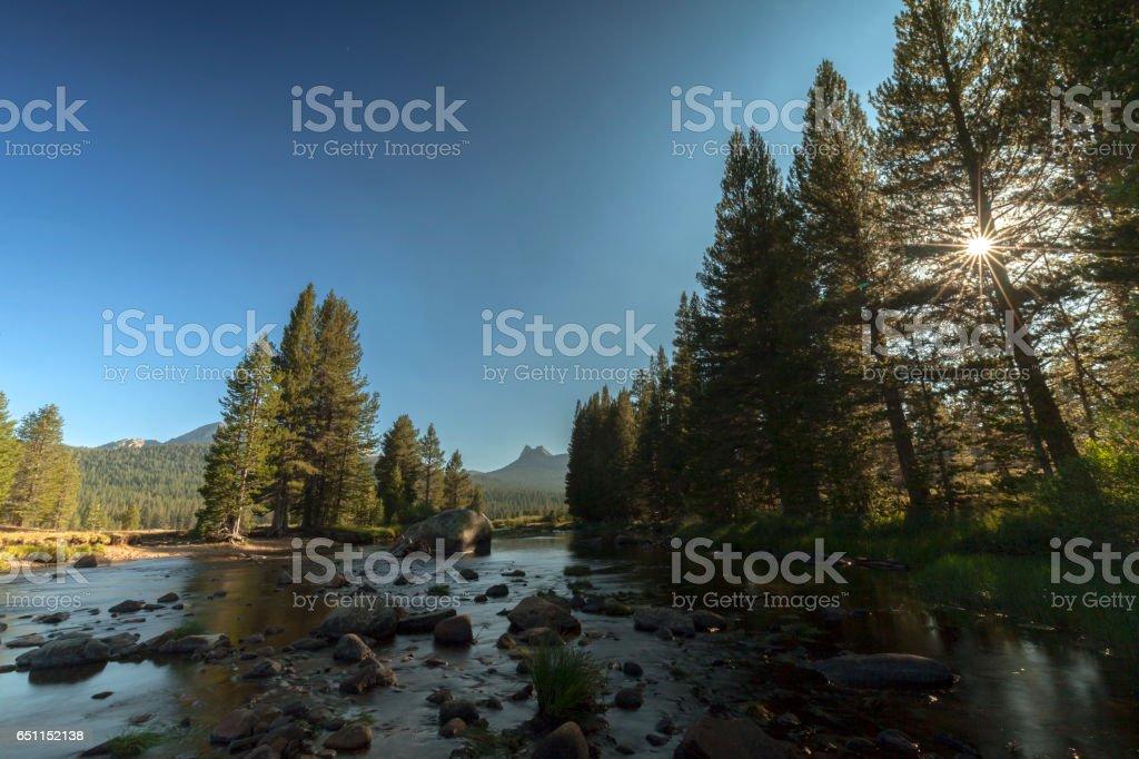 Yosemite Meadow Sunset stock photo