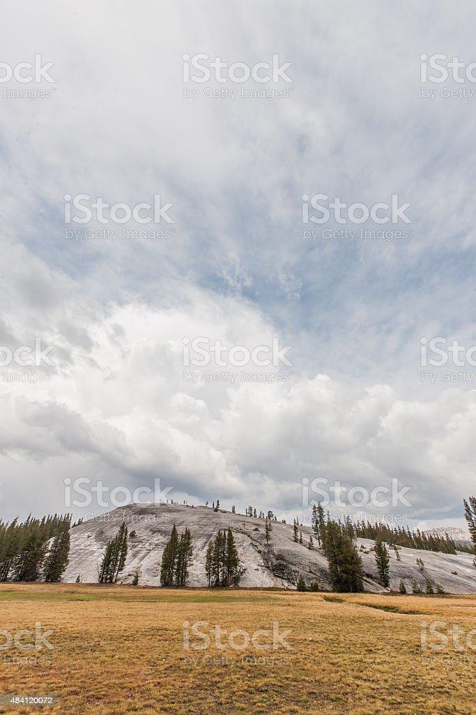 Yosemite Meadows stock photo