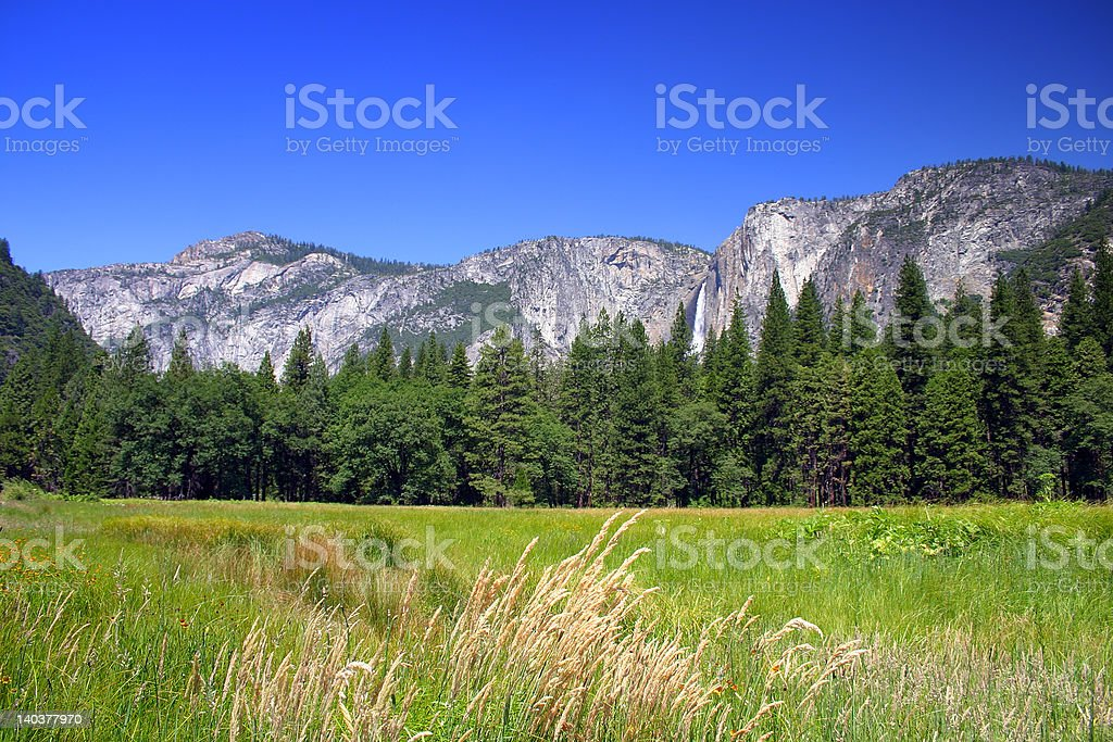 Yosemite National Park, USA royalty-free stock photo