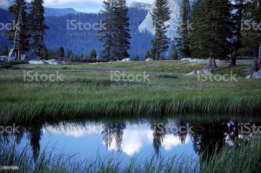 Yosemite Reflection royalty-free stock photo