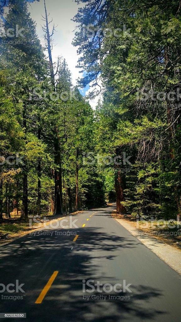 Yosemite Road stock photo