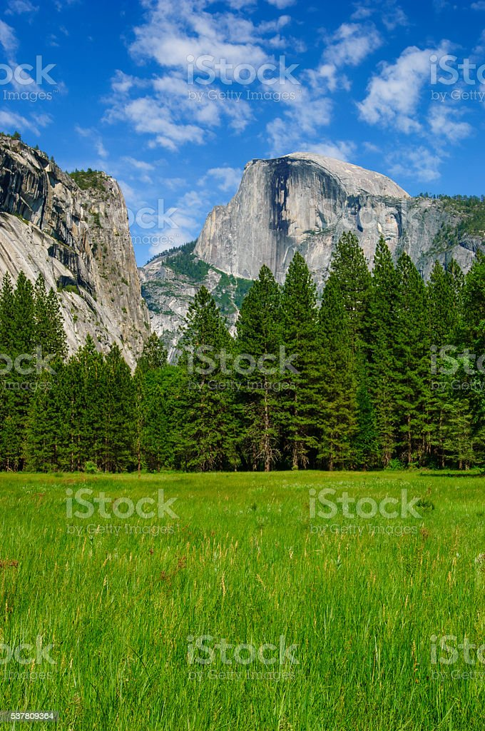 Yosemite's Half Dome in the Spring stock photo