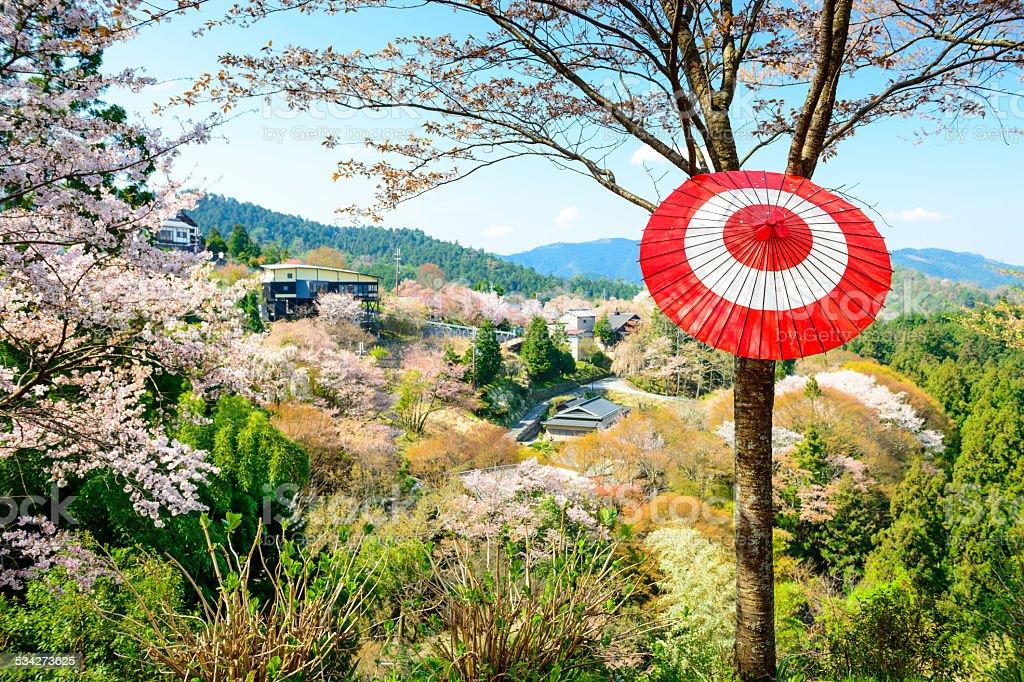 Yoshinoyama, Japan Spring Landscape stock photo