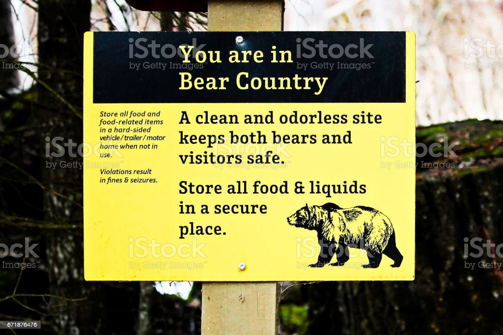 You are in Bear Country sign stock photo