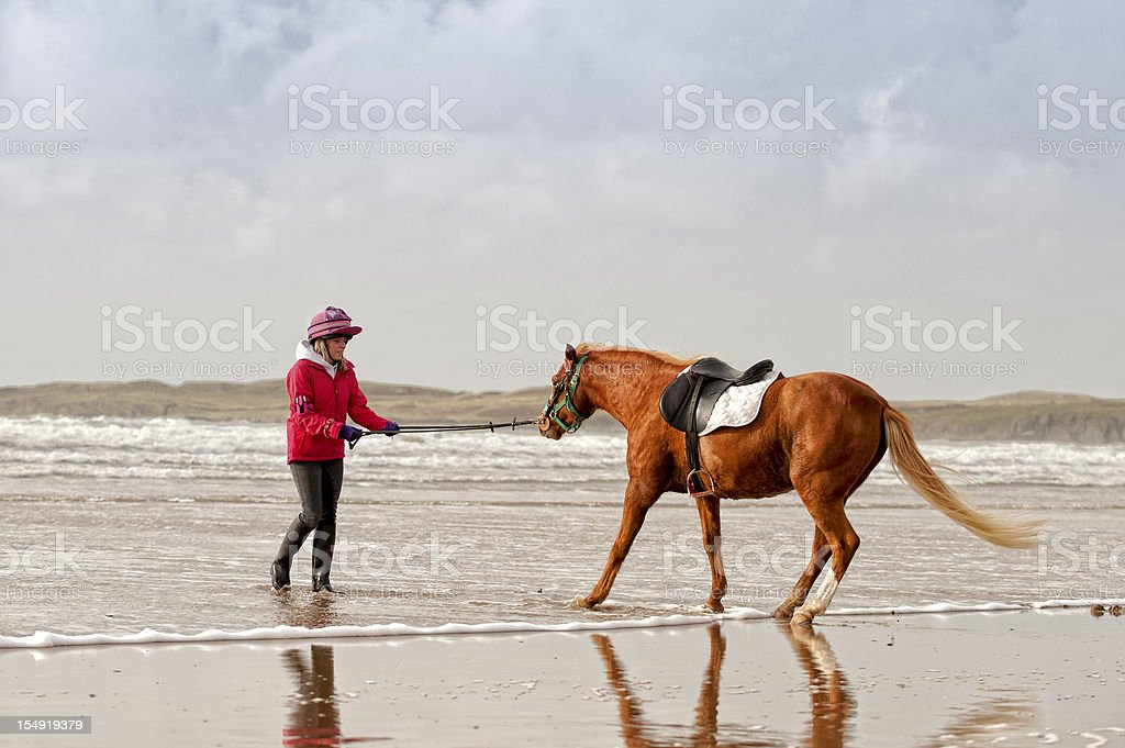 you can take a horse to water... royalty-free stock photo