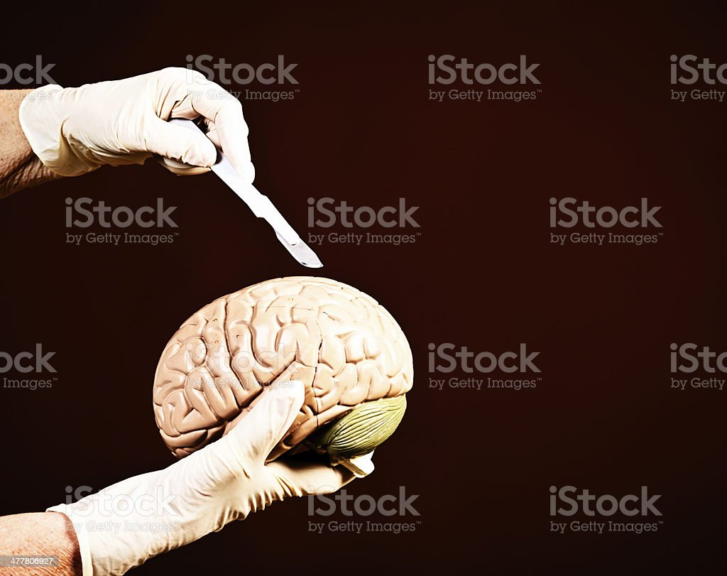 You cut here: demonstrating brain surgery techniques on dummy royalty-free stock photo