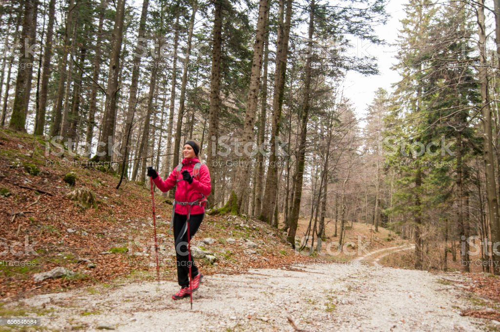 Young Active Woman Trekking In The Forest stock photo