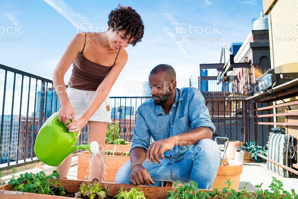 Young adult couple tending to their rooftop garden stock photo